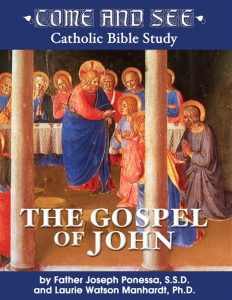 Come and See: The Gospel of John DVD